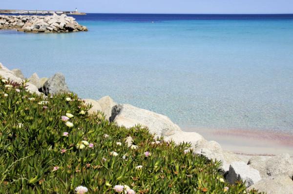 Strand Saleccia im Norden Korsikas