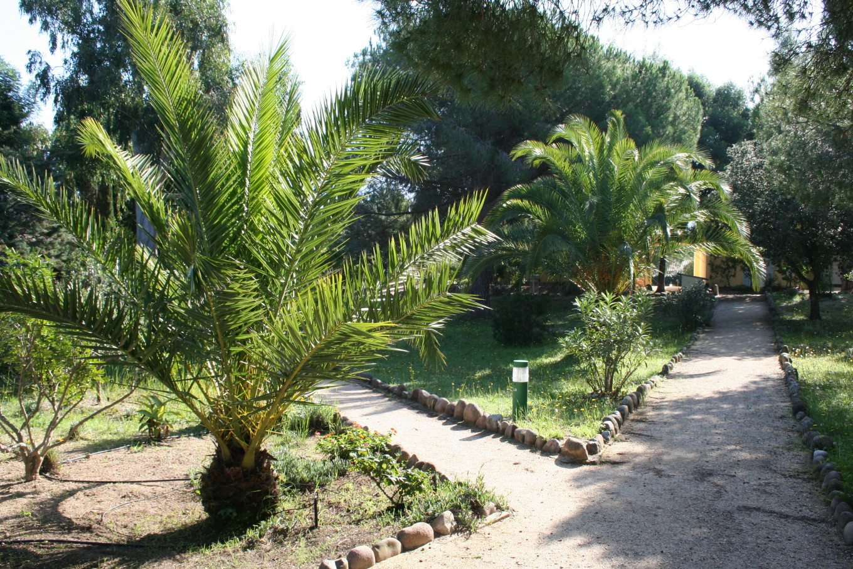 Naturpark des Feriendorfes Zum Störrischen Esel