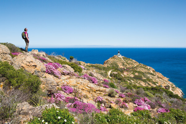 Wandern im Frühling auf Korsika