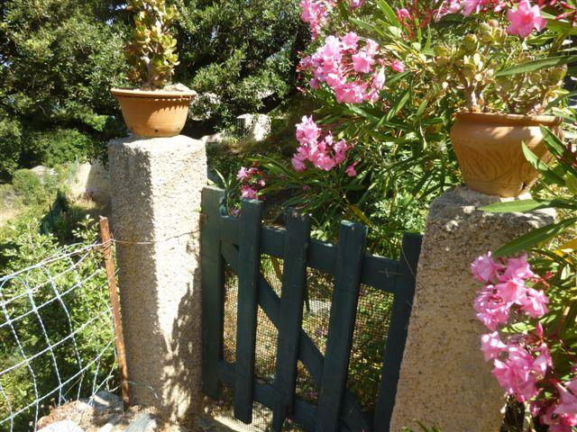 Mein Korsika – ein Bericht aus dem Rundbrief 2016