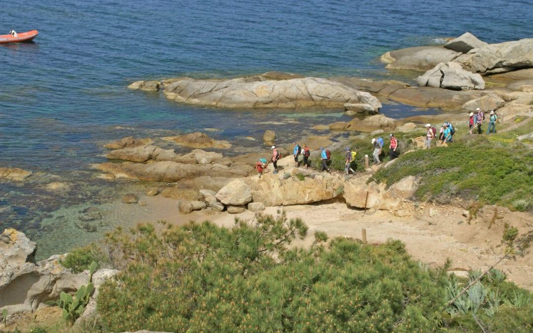 Frühlingserwachen auf Korsika
